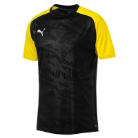 more info on Puma CUP Core Jersey Kit (Adult)