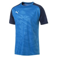 more info on Puma CUP core jersey (Junior)