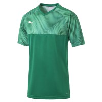 more info on Puma CUP jersey s/s (13-14yrs)
