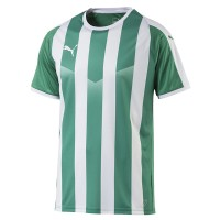more info on  Puma Liga Jersey Striped (13-14yrs)