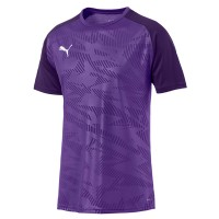 more info on Puma CUP core jersey (13-14yrs)
