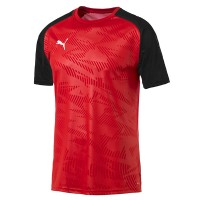 more info on Puma CUP Core Jersey Kit (Junior)