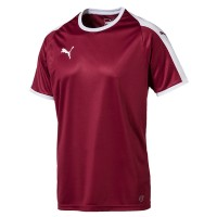 more info on Puma Liga Jersey Kit (Adults)