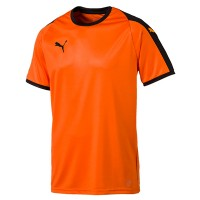 more info on Puma Liga Jersey Kit (13-14yrs)