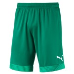 more info on Puma CUP short (13-14yrs)