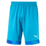 more info on Puma CUP short GK (Junior)