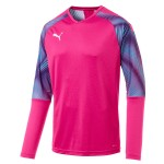 more info on Puma CUP GK jersey (Junior)