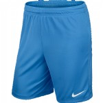 more info on Nike Park II Knit Short (Adults)