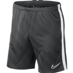 more info on Nike Academy 19 Short (Adults)